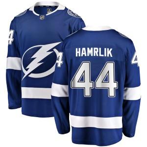 Roman Hamrlik Tampa Bay Lightning Men's Fanatics Branded Blue Breakaway Home Jersey